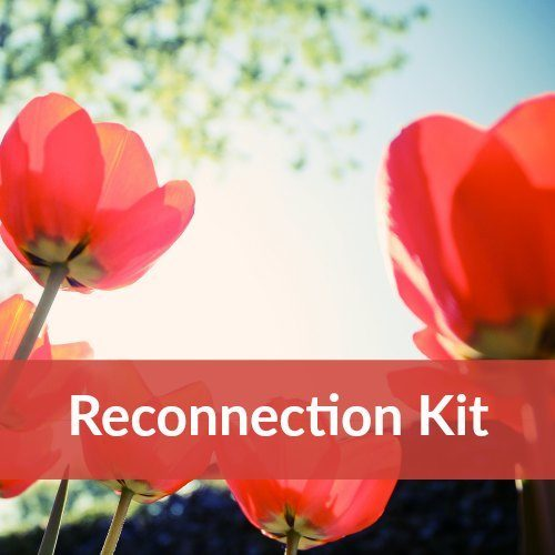 Have you been fighting a lot lately? Feeling irritable and angry at each other? How can you stop the fighting and get back to loving each other? Enter the relationship reconnection kit. This 30 page kit will take you from disconnected and mad to reconnected and ready to move forward. By Dawn Serra